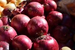 Στάση αγοράς με τα κόκκινα κρεμμύδια, οργανική παραγωγή προϊόντων Στοκ Εικόνες