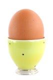 στάση αυγών Στοκ εικόνες με δικαίωμα ελεύθερης χρήσης