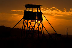 στάση ελαφιών Στοκ φωτογραφία με δικαίωμα ελεύθερης χρήσης
