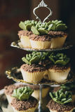 Στάση μετάλλων με τα cupcakes Στοκ Φωτογραφίες