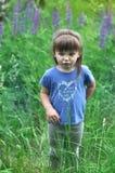 Στάση μικρών κοριτσιών που ανατρέπεται στα ηλιόλουστα ανθίζοντας δασικά λουλούδια lupine επιλογής παιδιών μικρών παιδιών παιχνίδι Στοκ Εικόνες