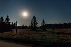 Στάση νεαρών άνδρων στη συμπαθητική νύχτα αστεριών με τα δέντρα και φεγγάρι στο hory, τσεχικό τοπίο Novohradske στοκ εικόνες