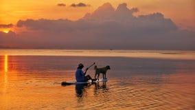 Στάση-πίνακας που κωπηλατεί με το σκυλί Στοκ Εικόνες