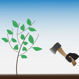 Στάση που περιορίζει τα ζωντανά δέντρα η φύση προστατεύει απεικόνιση αποθεμάτων