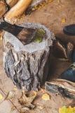 Στάση τσεκουριών στο κολόβωμα, κούτσουρο που βρίσκεται έπειτα Στοκ φωτογραφία με δικαίωμα ελεύθερης χρήσης