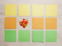 Στάσιμος, χρωματισμένη κενό αυτοκόλλητη ετικέττα, Pushpins στο λευκό ξύλινο πίνακα Τοπ όψη Επίπεδος βάλτε Χρόνος-διαχείριση, προγ Στοκ Εικόνες