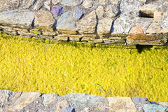 Στάσιμο νερό με τις πέτρες που προκύπτουν στην επιφάνεια Στοκ φωτογραφία με δικαίωμα ελεύθερης χρήσης