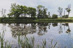 στάσιμο ύδωρ Στοκ φωτογραφία με δικαίωμα ελεύθερης χρήσης