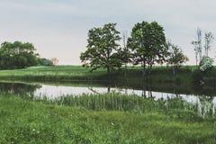 στάσιμο ύδωρ Στοκ Φωτογραφίες