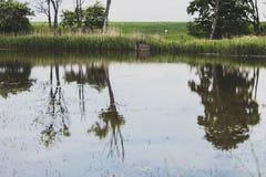 στάσιμο ύδωρ Στοκ εικόνες με δικαίωμα ελεύθερης χρήσης