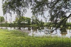 στάσιμο ύδωρ Στοκ Εικόνες