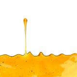 Στάλαγμα μελιού στοκ εικόνα με δικαίωμα ελεύθερης χρήσης