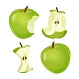 Στάδια ολόκληρου και του δαγκωμένου μήλου που απομονώνεται στο άσπρο υπόβαθρο διανυσματική απεικόνιση