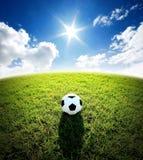 Στάδιο ποδοσφαίρου αγωνιστικών χώρων ποδοσφαίρου στον πράσινο αθλητισμό μπλε ουρανού χλόης Στοκ εικόνα με δικαίωμα ελεύθερης χρήσης