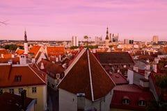 Στέγες κεραμιδιών του παλαιού Ταλίν Στοκ εικόνες με δικαίωμα ελεύθερης χρήσης