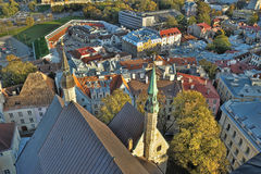 στέγες Ταλίν της Εσθονία&si Στοκ φωτογραφίες με δικαίωμα ελεύθερης χρήσης