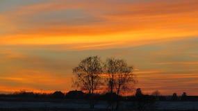 Στέγες χειμερινών ηλιοβασιλέματος και σπιτιών Στοκ Φωτογραφία