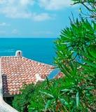 Στέγη και oleander Στοκ φωτογραφίες με δικαίωμα ελεύθερης χρήσης