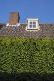 Στέγη με τα καφετιά κεραμίδια, το σωλήνα και τα πράσινα φύλλα Στοκ εικόνες με δικαίωμα ελεύθερης χρήσης