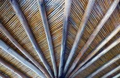 Στέγη μπαμπού Στοκ φωτογραφία με δικαίωμα ελεύθερης χρήσης