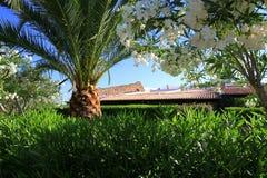 Στέγη που βλέπει από το θερινό κήπο στη Σαρδηνία Στοκ εικόνες με δικαίωμα ελεύθερης χρήσης