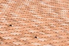 στέγη που κεραμώνεται κόκ& Στοκ Φωτογραφίες