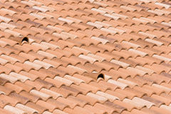 στέγη που κεραμώνεται κόκ& Στοκ Φωτογραφία
