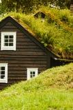Στέγη σπιτιών που καλύπτεται με το βρύο Στοκ Φωτογραφία