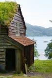 Στέγη σπιτιών που καλύπτεται με το βρύο Στοκ εικόνα με δικαίωμα ελεύθερης χρήσης