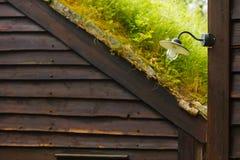 Στέγη σπιτιών που καλύπτεται με το βρύο Στοκ φωτογραφία με δικαίωμα ελεύθερης χρήσης