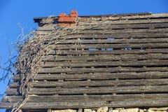 Στέγη του εγκαταλειμμένου σπιτιού του Δρ jones Στοκ εικόνα με δικαίωμα ελεύθερης χρήσης
