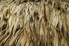 στέγη thatch Στοκ εικόνες με δικαίωμα ελεύθερης χρήσης