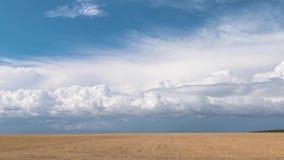 Στέπα ενάντια στο μπλε ουρανό με τα επιπλέοντα άσπρα σύννεφα, χρονικό σφάλμα απόθεμα βίντεο
