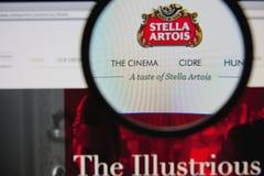 Στέλλα Artois Στοκ Εικόνες