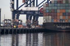 Στέλνοντας τερματικό εμπορευματοκιβωτίων βοτανικής λιμένων, Σίδνεϊ Στοκ Εικόνες