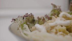 Στήθος κοτόπουλου με τα λαχανικά και τα μανιτάρια σε μια κρεμώδη σάλτσα με τα ζυμαρικά Εύγευστα μακαρόνια με το κοτόπουλο και τη  απόθεμα βίντεο