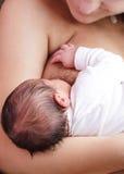 στήθος - που ταΐζει Στοκ φωτογραφίες με δικαίωμα ελεύθερης χρήσης