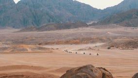 Στήλη των γύρων τετραγώνων ποδηλάτων μέσω της ερήμου στην Αίγυπτο στο σκηνικό των βουνών Οδήγηση ATVs απόθεμα βίντεο