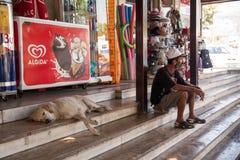 Στήριξη σε έναν δρόμο με έντονη κίνηση Το σκυλί και ο ιδιοκτήτης Ένα άτομο με το α στις όχθεις του ποταμού Δούναβης Οι τουρίστες  Στοκ Φωτογραφία