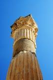 Στήλη Ephesus Στοκ φωτογραφίες με δικαίωμα ελεύθερης χρήσης