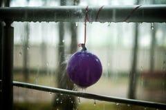 Σταγονίδια στο κιγκλίδωμα μπαλονιών και μετάλλων, θερινή βροχή Στοκ Φωτογραφία