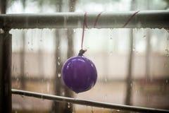 Σταγονίδια στο κιγκλίδωμα μπαλονιών και μετάλλων παιδιών, θερινή βροχή Στοκ φωτογραφίες με δικαίωμα ελεύθερης χρήσης