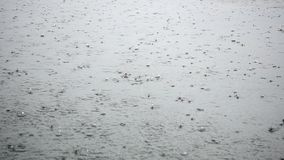 Σταγόνες βροχής που αφορούν την επιφάνεια νερού απόθεμα βίντεο
