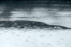 Σταγόνες βροχής που κυματίζουν στη λακκούβα νερού στο πεζοδρόμιο ασφάλτου κατά τη διάρκεια του θορίου Στοκ Φωτογραφία