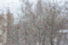 Σταγόνες βροχής στο παράθυρο με το υπόβαθρο δέντρων Καιρός χιονιού και βροχής απεικόνιση σχεδίου φυσαλίδων ανασκόπησής σας βροχή  Στοκ φωτογραφία με δικαίωμα ελεύθερης χρήσης