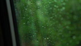 Σταγόνες βροχής στο παράθυρο στο αυτοκίνητο Εστίαση στις πτώσεις βροχής που μειώνουν το παράθυρο φιλμ μικρού μήκους