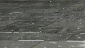 Σταγόνες βροχής στο πεζοδρόμιο σε ένα πάρκο πόλεων απόθεμα βίντεο