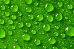 σταγόνες βροχής Στοκ εικόνες με δικαίωμα ελεύθερης χρήσης