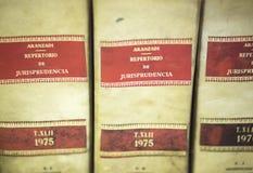 Σταθερά νομικά βιβλία νόμου Στοκ φωτογραφία με δικαίωμα ελεύθερης χρήσης
