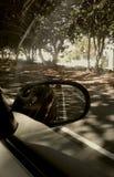 Σταθμευμένος δευτερεύων καθρέφτης αυτοκινήτων στοκ εικόνες